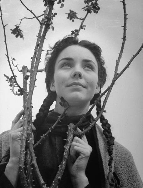 راهبه ای با پای برهنه کنار بوته گل سرخ/ مرگ جنیفر جونز بازیگر «آهنگ برنادت»
